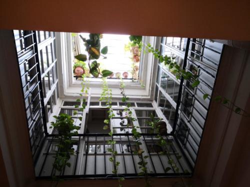 Vista de la montera y plantas